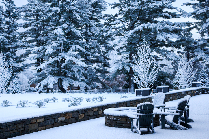 Get Your Landscaping Ready for the Holidays